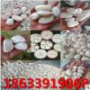 源头厂家供应 白色鹅卵石 园艺景观铺路用白石子 石米 白色砾石