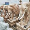众正石雕雕刻石象来样定制供应各种尺寸中国风古典门前摆件厂直销