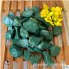 现货供应海洋绿石米 透水地坪胶粘石 机制磨圆鹅卵石 水洗绿石子